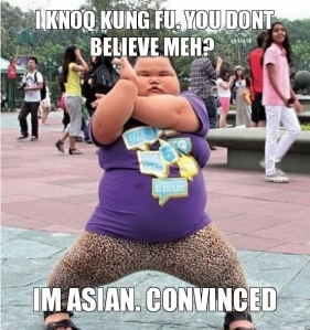 i-knoq-kung-fu-you-dont-believe-meh-im-asian-convinced